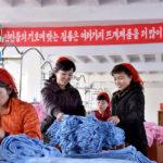 Továrna pletenin Songjo zvyšuje výrobu