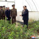 Súdruh Pak Pong Ču skontroloval priebeh prác v rôznych oblastiach Pchjongjangu