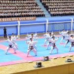 Oslavy 20. výročí Mezinárodního výboru her bojových umění