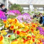 """Dětská květinová zahrada """"15. dubna"""""""