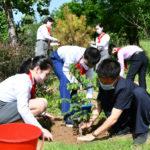 Deti pestujú vlasteneckého ducha pri vysádzaní stromov